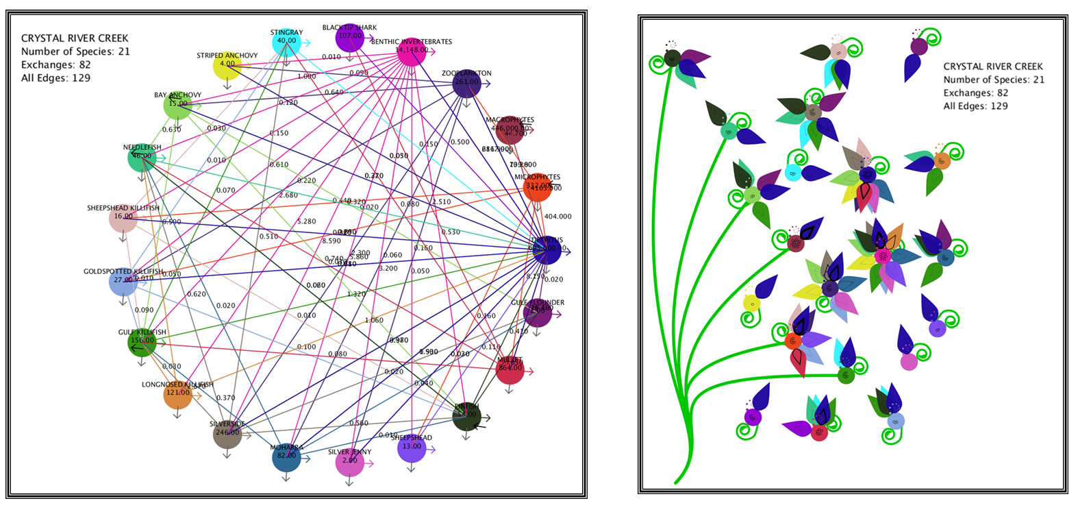 Node-link layout (left) and Daisy Visualization (right) for 21 species ecological network of Crystal Creek River.