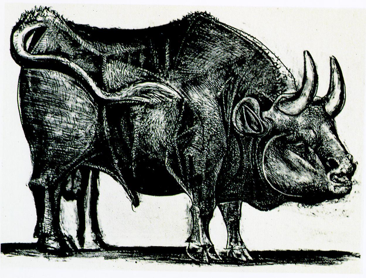 """毕加索的""""公牛""""系列画 放大版 11张"""