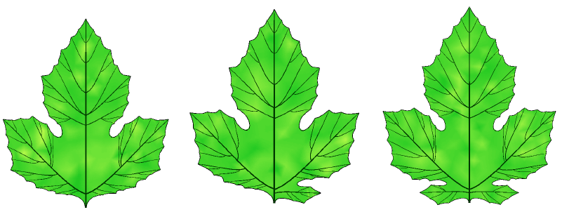 Simulated red mulberry leaves (Morus Rubra).